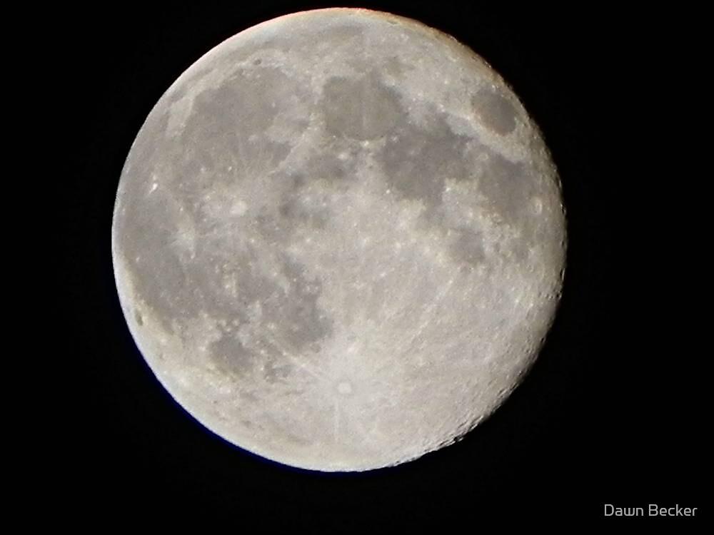 Moon rising © by Dawn Becker