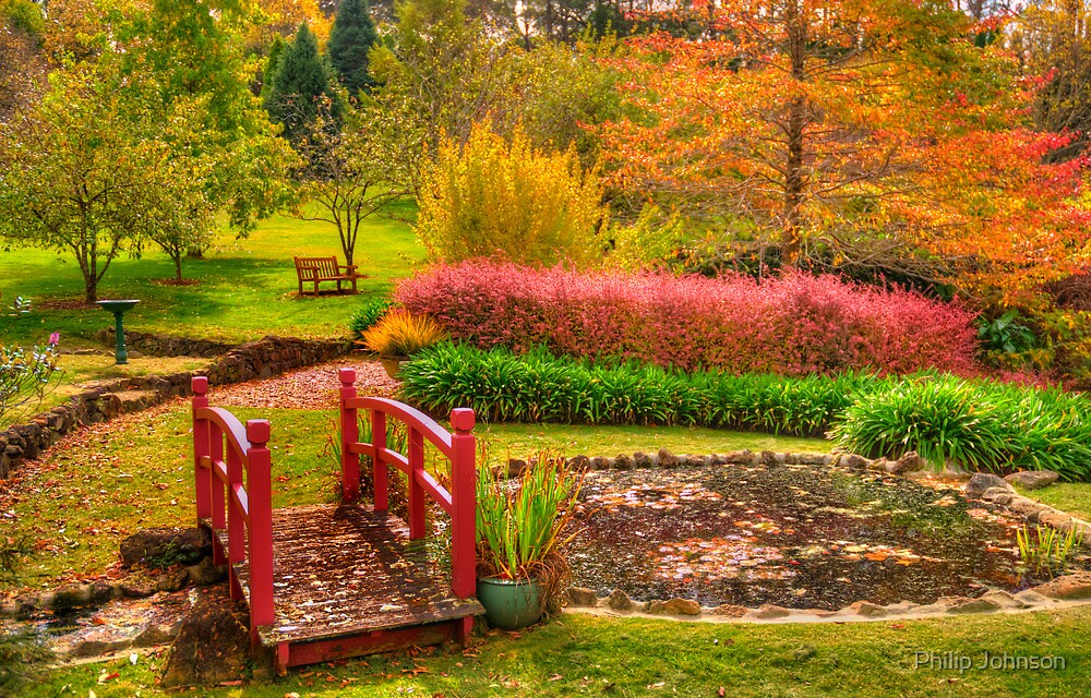 Secret Garden - Mount Wilson  # 6 , NSW Australia - The HDR Experience by Philip Johnson
