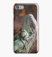Beautiful peaceful Iguana Lizard sitting on a tree.  iPhone Case/Skin