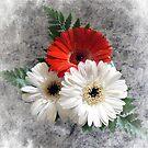 Bouquet. by Lynne Haselden
