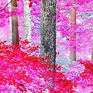 Red Forest by MacroXscape