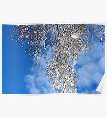 Birch Branch  Poster