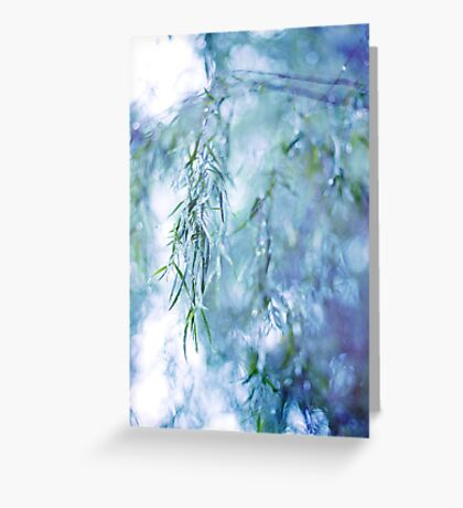 Silver Branches Greeting Card