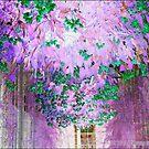 Dream Garden by MacroXscape