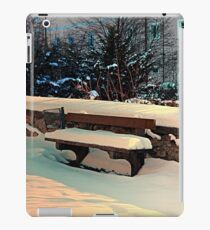 Snow covered bench iPad Case/Skin