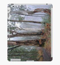 Ghosts In The Mist - Victorian Alps, Australia (IPAD CASE) iPad Case/Skin