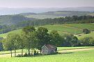 Forgotten Farmhouse In August Haze by Gene Walls