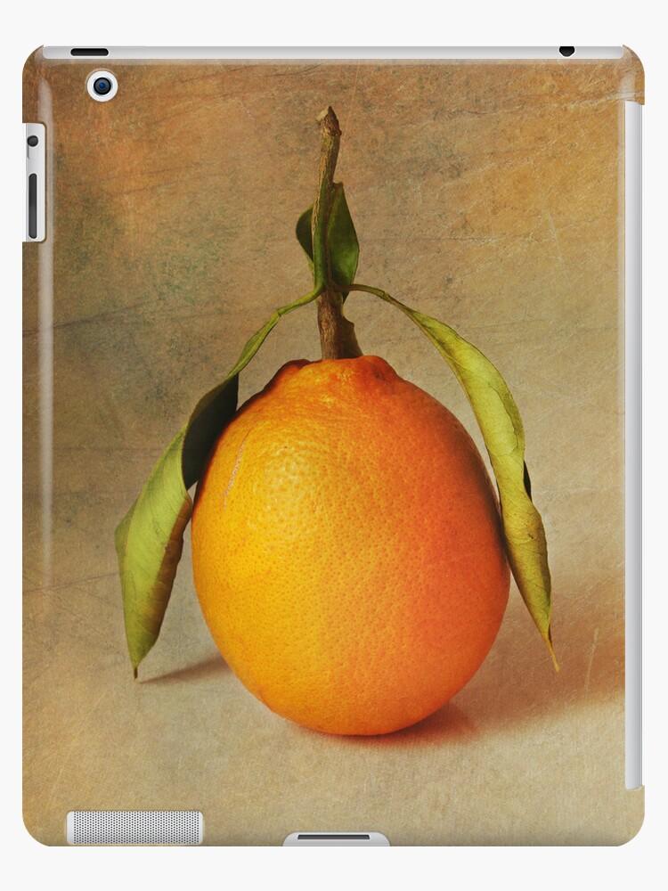 arancia by lucyliu