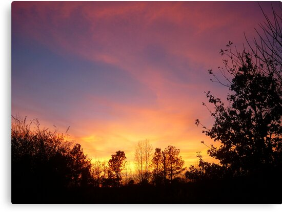 Alabama Sunset by Vivian Eagleson