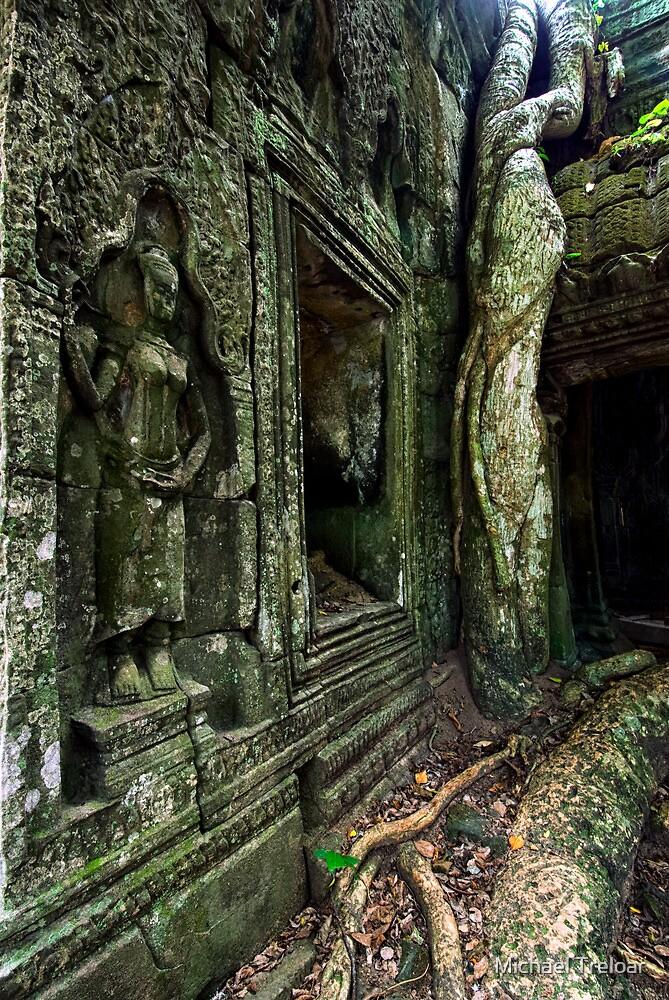 Twisted, Cambodia by Michael Treloar
