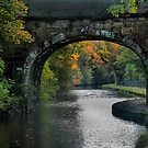 Lancaster Canal by Irene  Burdell