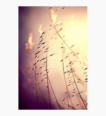 Imagine... Photographic Print