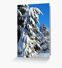Garden in Winter II Greeting Card