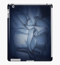 Pottery iPad Case/Skin