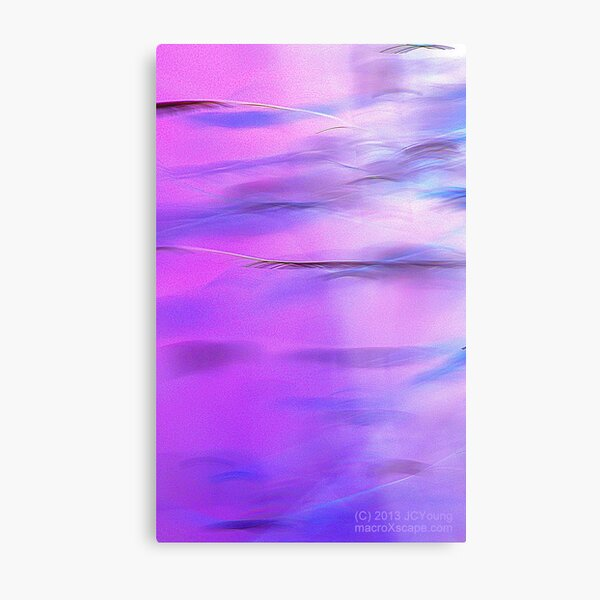 Fuzzy Purple Metal Print