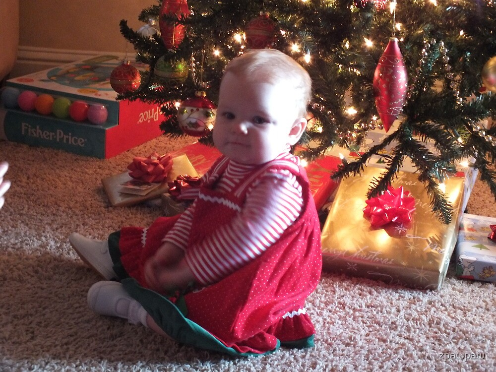 Something Special Under the Tree..... by zpawpaw