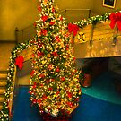 OH,CHRISTMAS TREE.. by buddybetsy