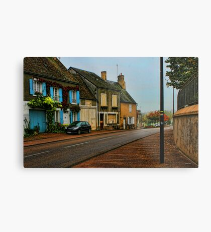 Country town Metal Print