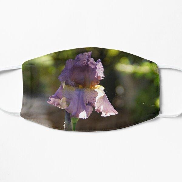 Iris in the Garden - Magpie Springs - Adelaide Hills Wine Region - Fleurieu Peninsula - South Australia Mask
