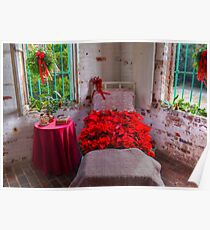 Bed Of Poinsettas Poster