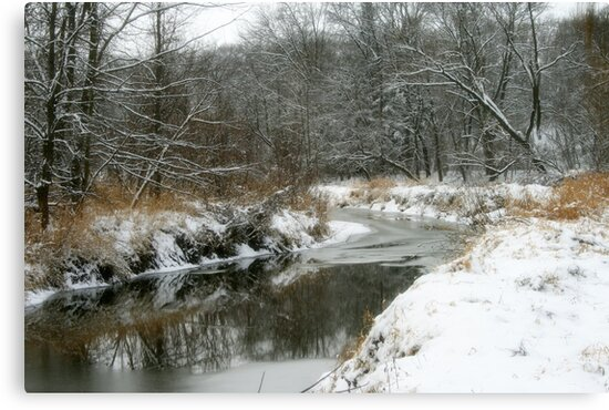 Reflections Of Winter by kkphoto1