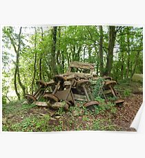 Abandoned Mine Carts Poster