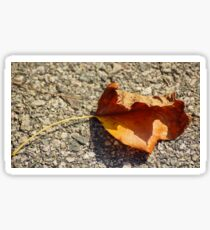 Fall Leaf Shadow Sticker