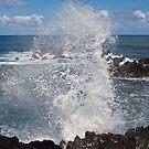 Making a Splash by Barb White