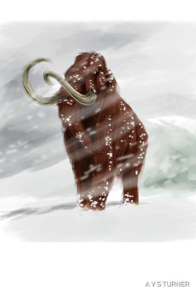 Mammoth (greetings card) by A V S TURNER