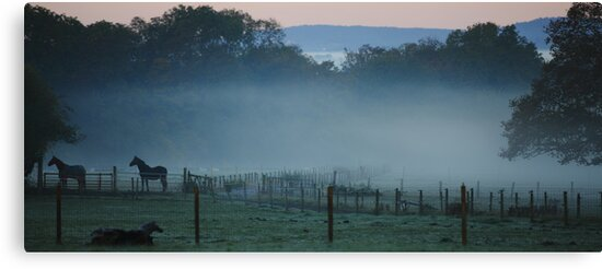 A Blanket of Fog by Stephen J  Dowdell