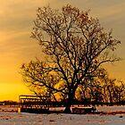 Country Sunset by Keri Harrish