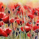 Poppies by Donna Jill Witty