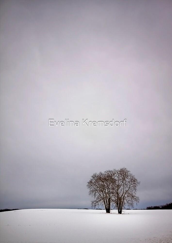 Two by Evelina Kremsdorf