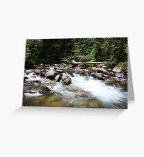 Ofi Creek Greeting Card