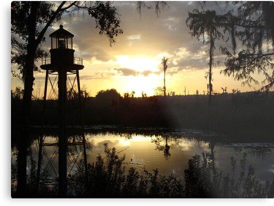 Econfina Creek Sunset, December 1, 2012 by May Lattanzio