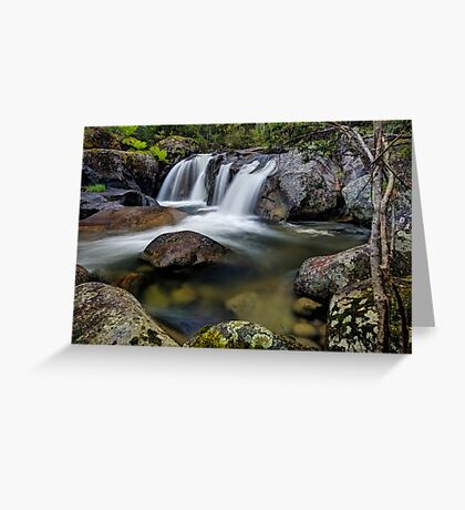 Hues of Paradise Greeting Card