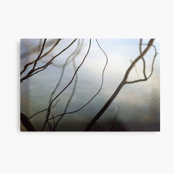 Twigs Metal Print