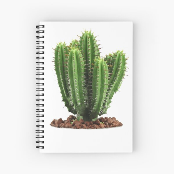 Que Significa Spiral Notebooks Redbubble