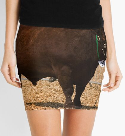 Sweet Chariot Mini Skirt