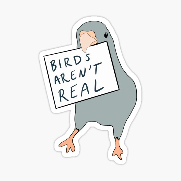 Birds arent real sticker Sticker