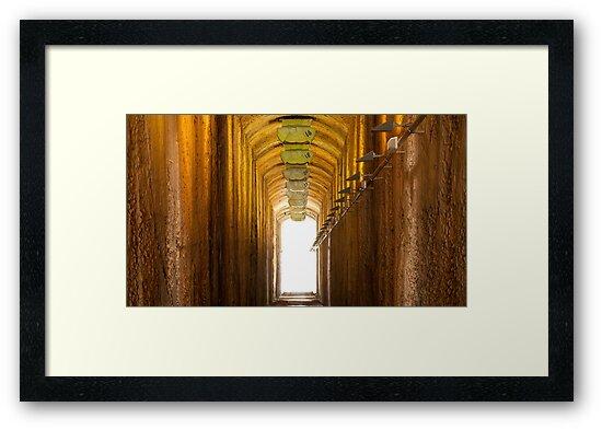 4th December 2012 by David O'Sullivan