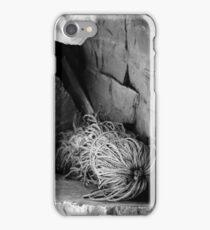 Cast Adrift iPhone Case/Skin