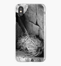 Cast Adrift iPhone Case