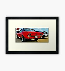 Mustangs old and new Framed Print