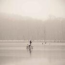 In Fog by Mary Ann Reilly