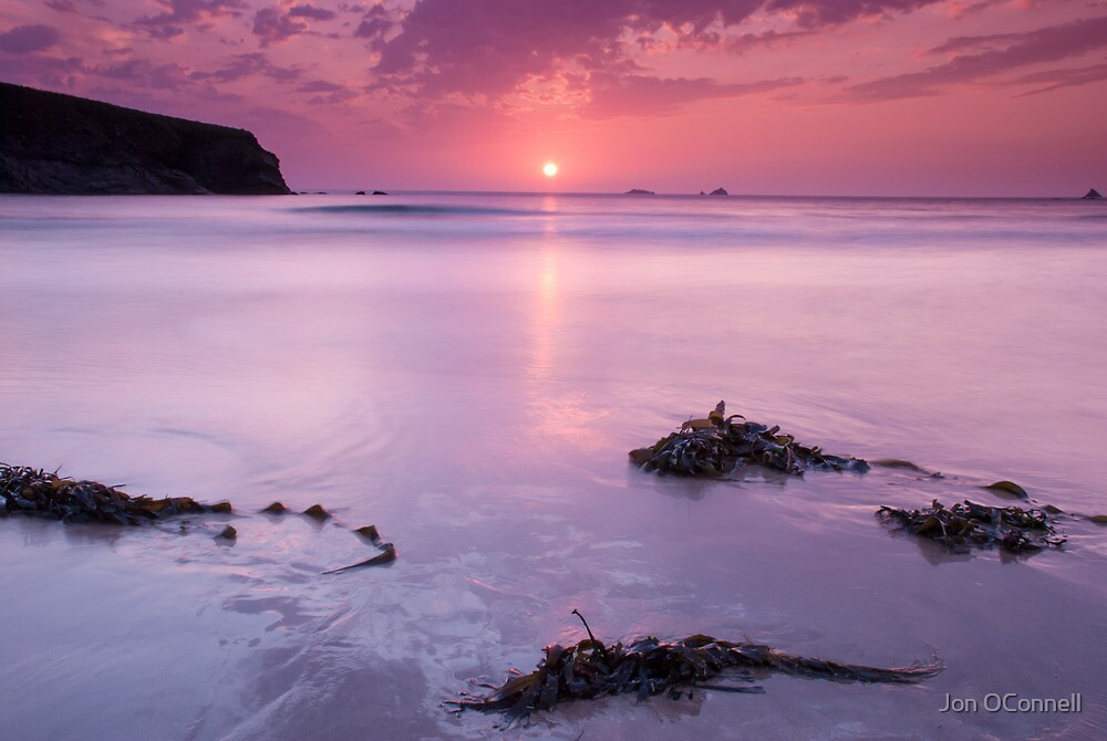 Shades of Pink by Jon OConnell