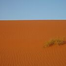 Textural Desert by Amy Hale