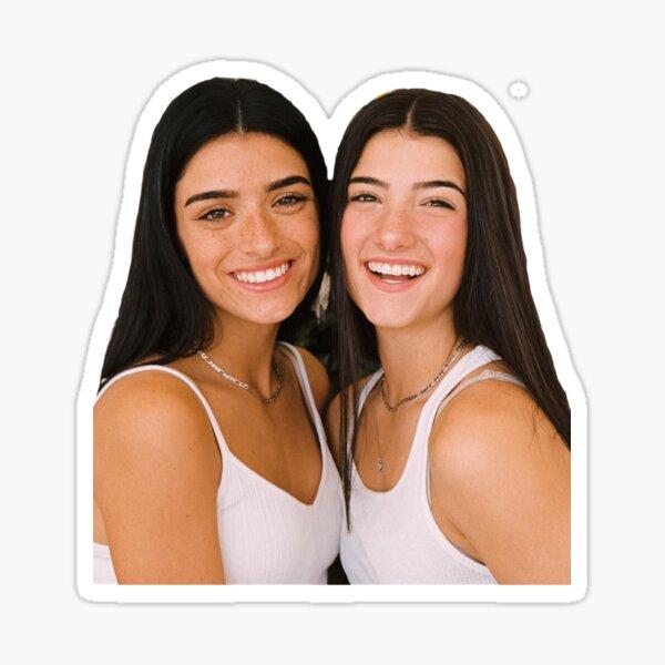 Damelio Sisters Sticker