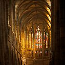 St. Vitus Cathedral by Edward Perry