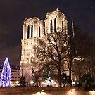 Christmas Tree by Notre-Dame 2 by Elena Skvortsova
